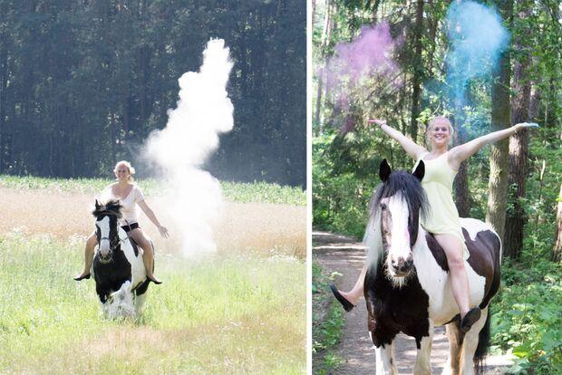 CAV Fan-Pferde Rosi Susanne Streil