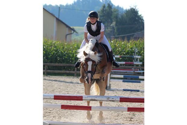 CAV Fan-Pferde Santana Susanna Esterer