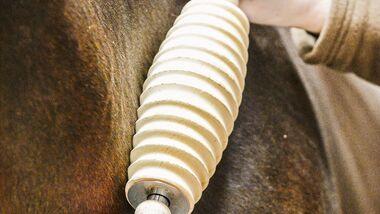 CAV Faszien Pferd Training Pflege TL Aufmacher