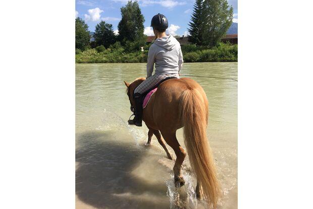 CAV Fotowettbewerb BR Pferde baden Alena Felicia