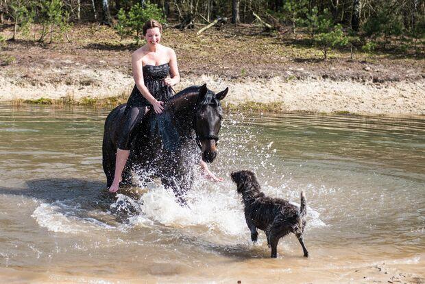 CAV Fotowettbewerb BR Pferde baden Anja Lemmnitzer