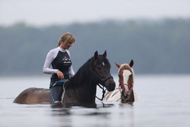 CAV Fotowettbewerb BR Pferde baden Britta Schulze