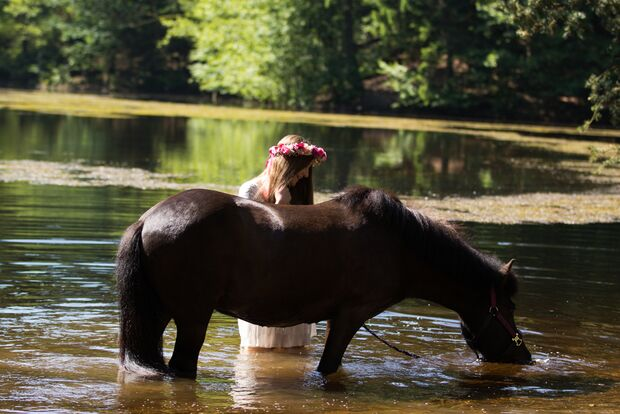 CAV Fotowettbewerb BR Pferde baden Constanze Jendrike