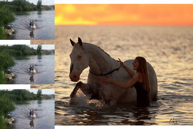 CAV Fotowettbewerb BR Pferde baden Ellen