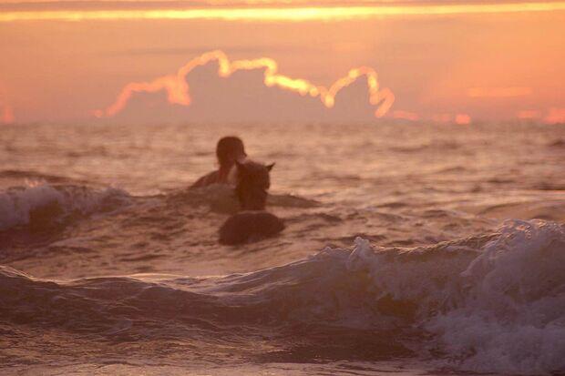 CAV Fotowettbewerb BR Pferde baden Jasmin Behrenbeck