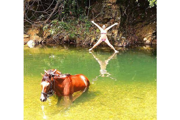 CAV Fotowettbewerb BR Pferde baden Jenny Li