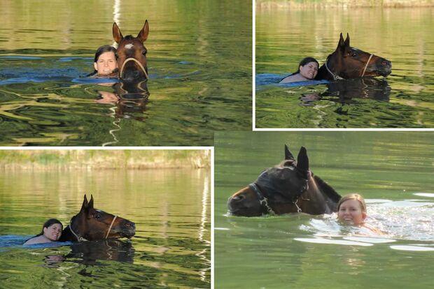 CAV Fotowettbewerb BR Pferde baden Jessica Leibinger