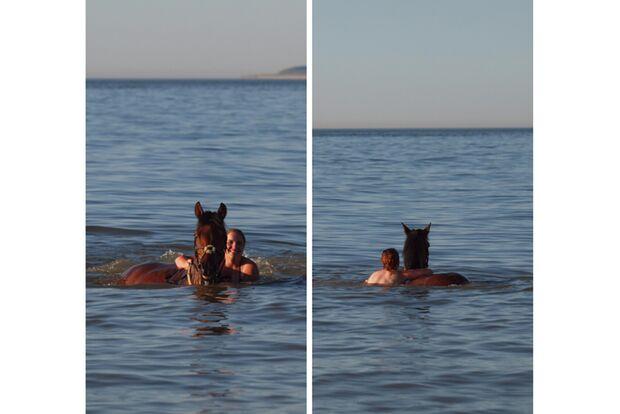 CAV Fotowettbewerb BR Pferde baden Jessica Woletz