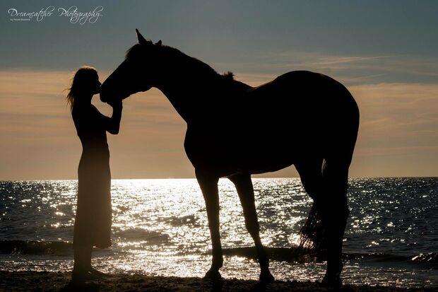 CAV Fotowettbewerb BR Pferde baden Johanna Müller