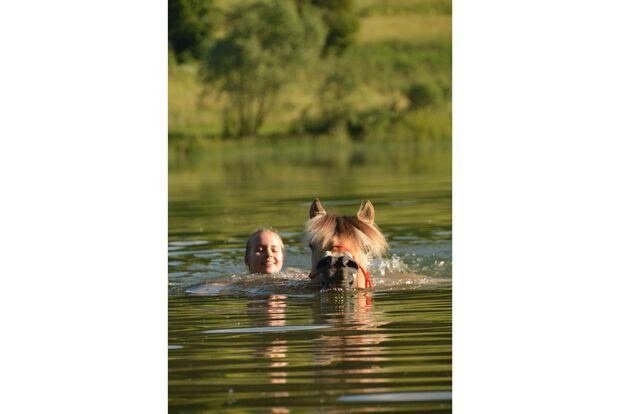 CAV Fotowettbewerb BR Pferde baden Katrin Kohlitz