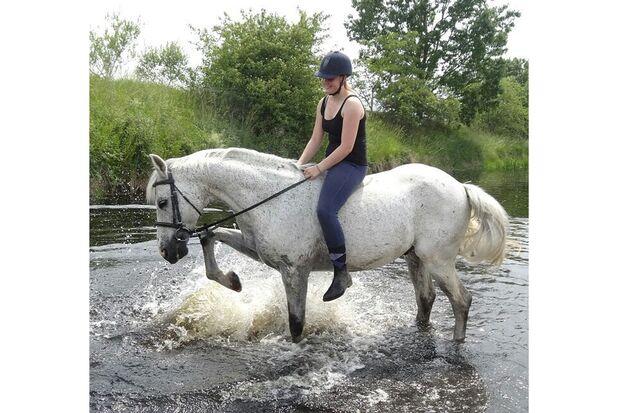 CAV Fotowettbewerb BR Pferde baden Michelle Gotfrid
