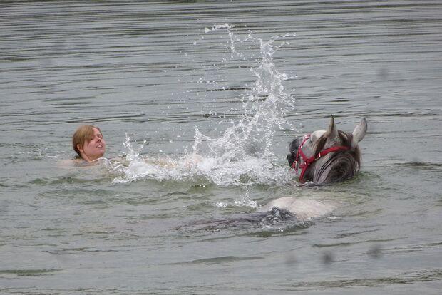 CAV Fotowettbewerb BR Pferde baden Samira Böcker