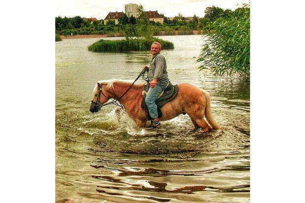 CAV Fotowettbewerb BR Pferde baden Uwe Hübscher