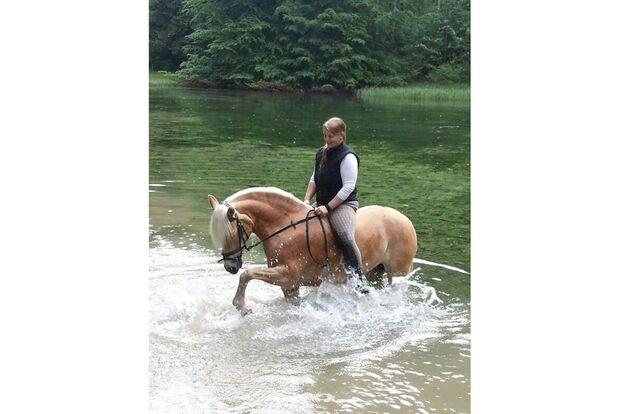 CAV Fotowettbewerb BR Pferde baden Veronika Herz