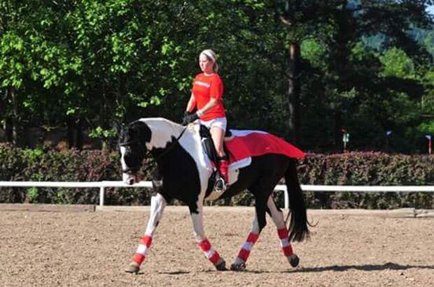 CAV Fotowettbewerb BR ballverrückte Pferde Andrea Leitner