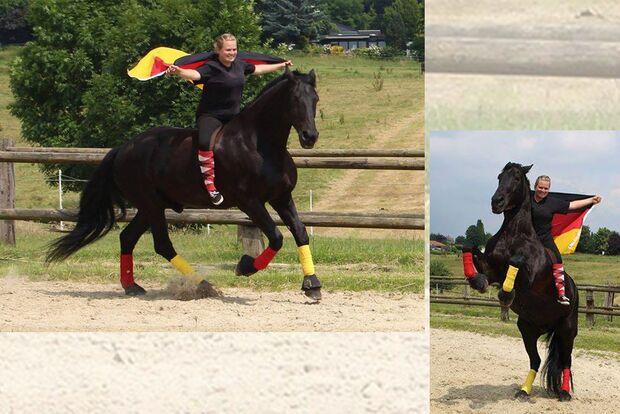 CAV Fotowettbewerb BR ballverrückte Pferde Jaqueline Ku