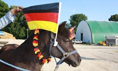 CAV Fußball-WM mit Pferden Nani