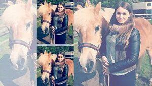 CAV Geburtstagspferde Jennifer Nelli