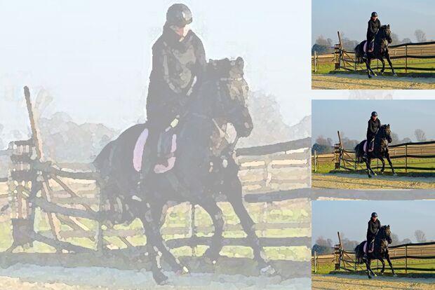 CAV Geburtstagspferde Yasmine Fleur