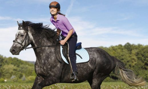 CAV Geländereiten Pferd Reiten