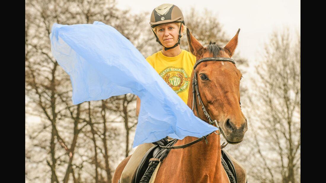 CAV Gelassenheit Pferd Schreckhaftig