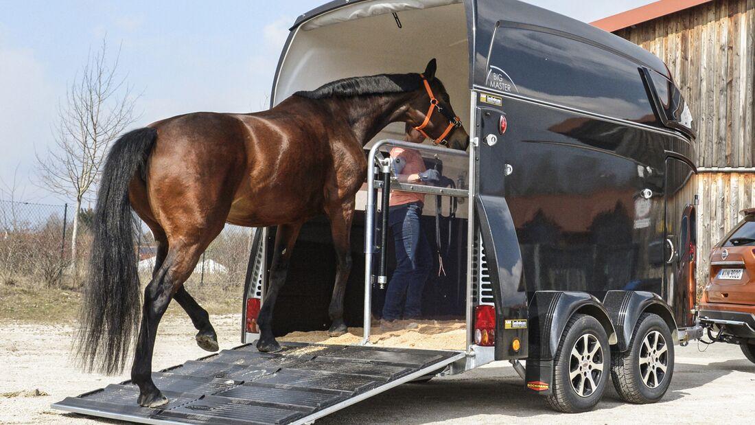 CAV Hänger Pferd Pferdeanhänger