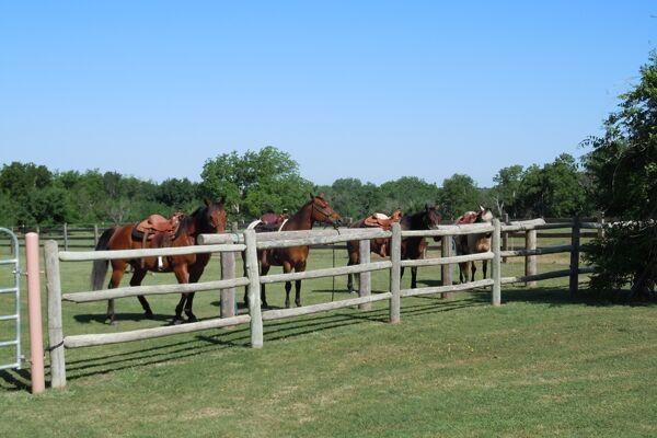 CAV Haverstreng Guest Ranch 10