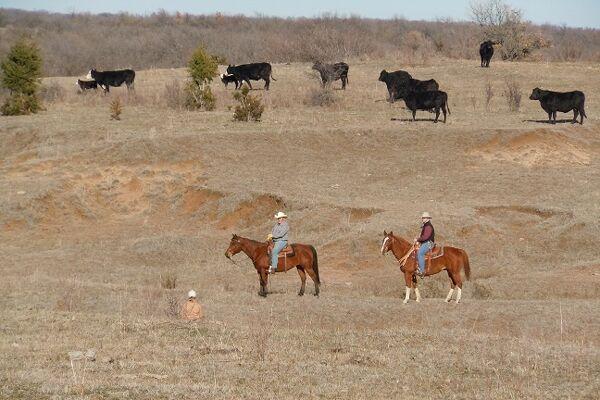 CAV Haverstreng Guest Ranch 6
