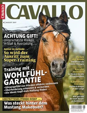 CAV Heft August 2017