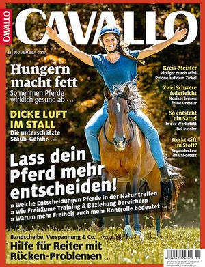 CAV Heft November 2017