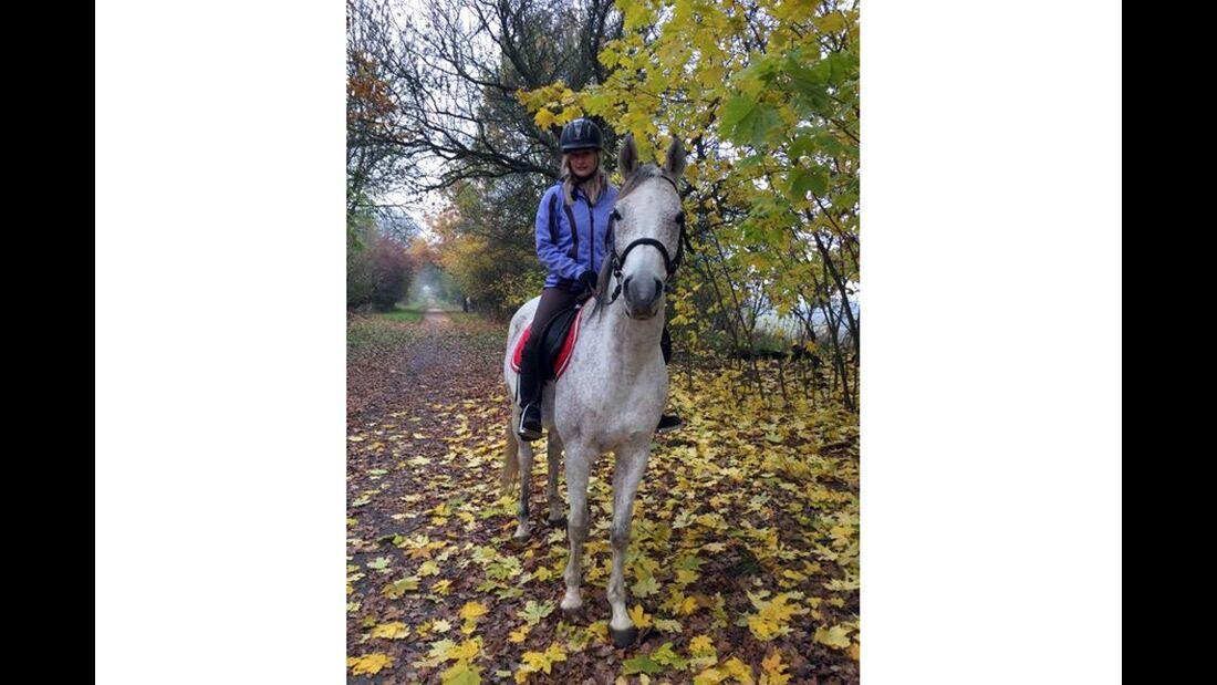 CAV Herbst Leserfotos Berni Hanfstengel