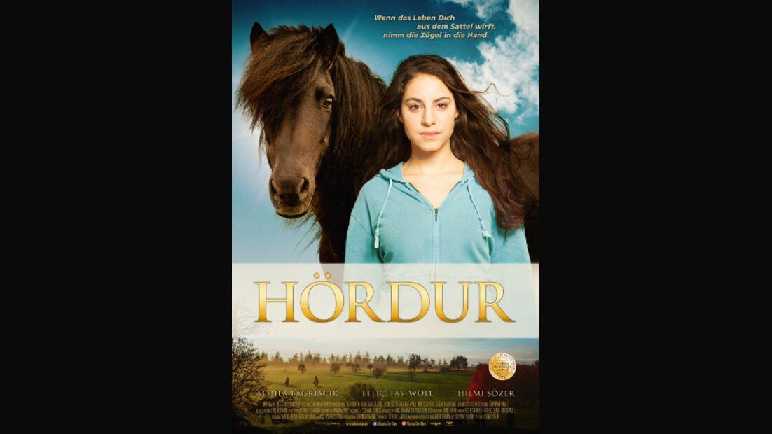 CAV Hördur Kino Isländer Poster