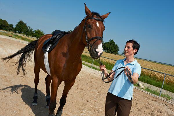 CAV Horse and Dog Trail Sabine Lang 2