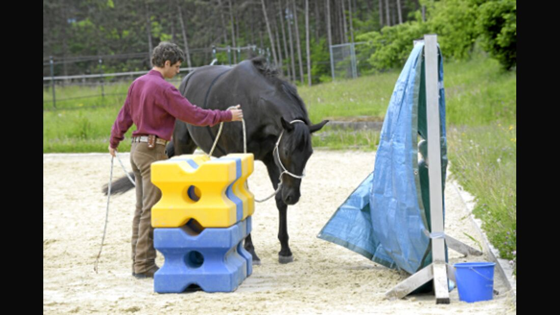 CAV Horsemanship Arien Aguilar