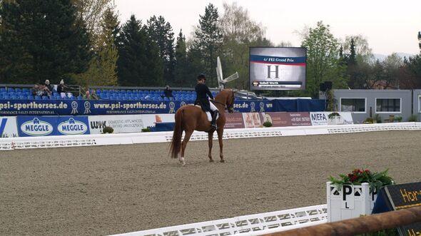 CAV Horses Dreams Isabell Werth Warum nicht