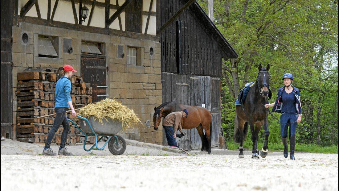 CAV Hungerlöhne Pferdewirt Stall misten