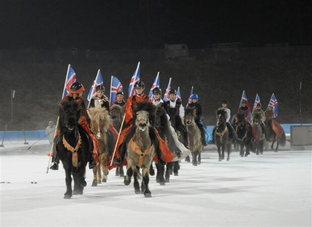 CAV Icehorse 2010: EM der Islandpferde in Berlin_02