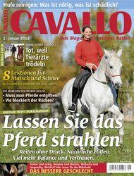 CAV Januar 2013 Cover Titel