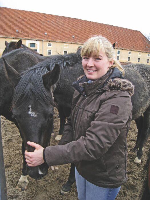 CAV Jungpferd anreiten_03_092009