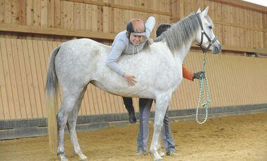 CAV Jungpferd anreiten Shimounah