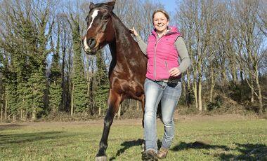 CAV Kommunikation Was Pferde sagen Aufmacher