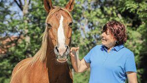 CAV Kommunikation Wie sag ich's meinem Pferd Aufmacher