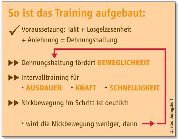 CAV Kondition Ausdauer Fitness Dressur Gelände - Grafik1