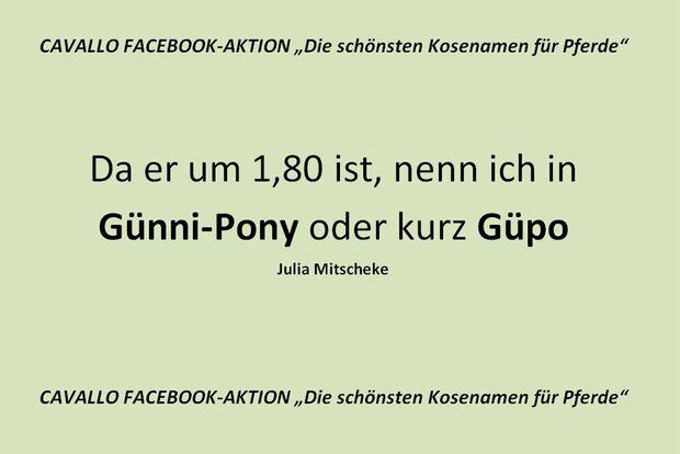 CAV Kosenamen Leserfotos 2014 - Günni-Pony