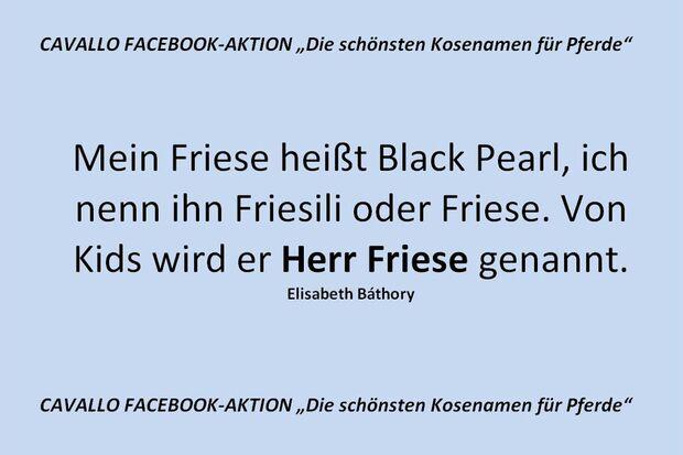 CAV Kosenamen Leserfotos 2014 - Herr Friese