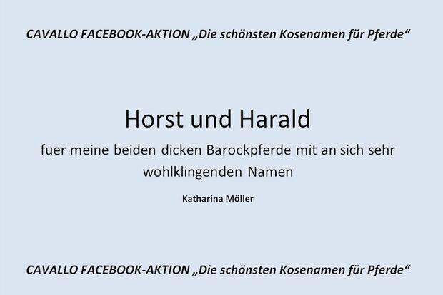 CAV Kosenamen Leserfotos 2014 - Horst und Harald