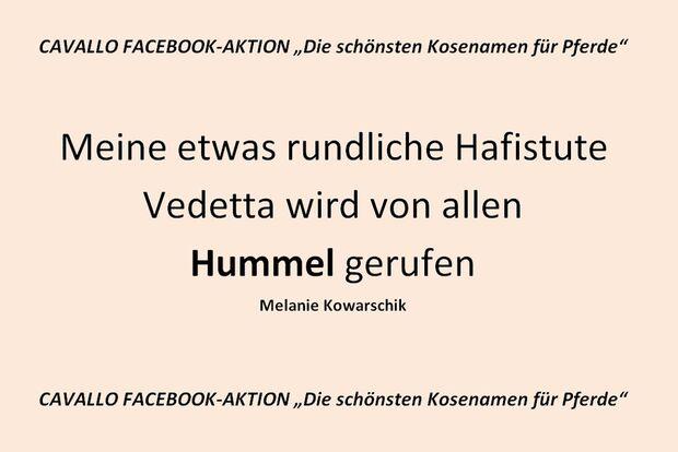 CAV Kosenamen Leserfotos 2014 - Hummel