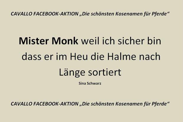 CAV Kosenamen Leserfotos 2014 - Mister Monk