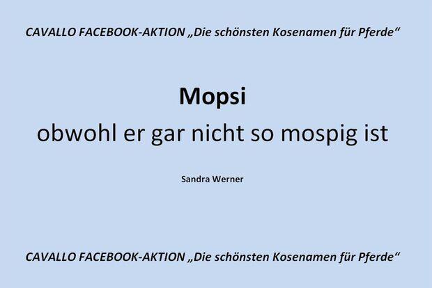 CAV Kosenamen Leserfotos 2014 - Mopsi
