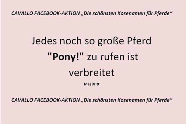 CAV Kosenamen Leserfotos 2014 - Pony